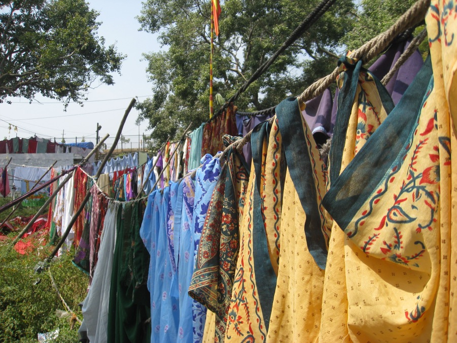 sharis-drying